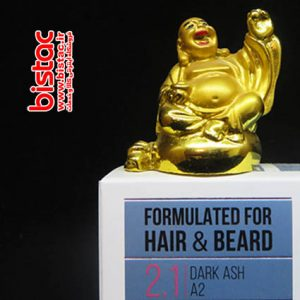 BIOL Mens Shampoo A2-2.1 DARK ASH-bistac-ir04