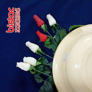 7 (liter glazed pelvis (Russia-bistac-ir02